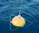 Waverecorder buoy.JPG