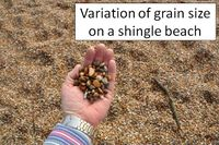 Variation of grain size on a single beach.jpg
