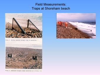 Field measurements Traps at shoreham beach.jpg